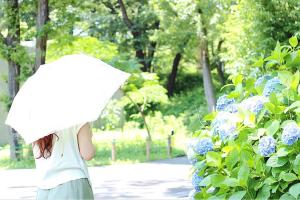 熱中症予防にも日傘を有効活用しましょう!サムネイル