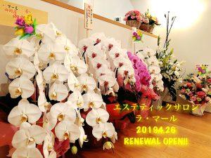 本日4/26、西新宿にてリニューアルオープンいたします!サムネイル